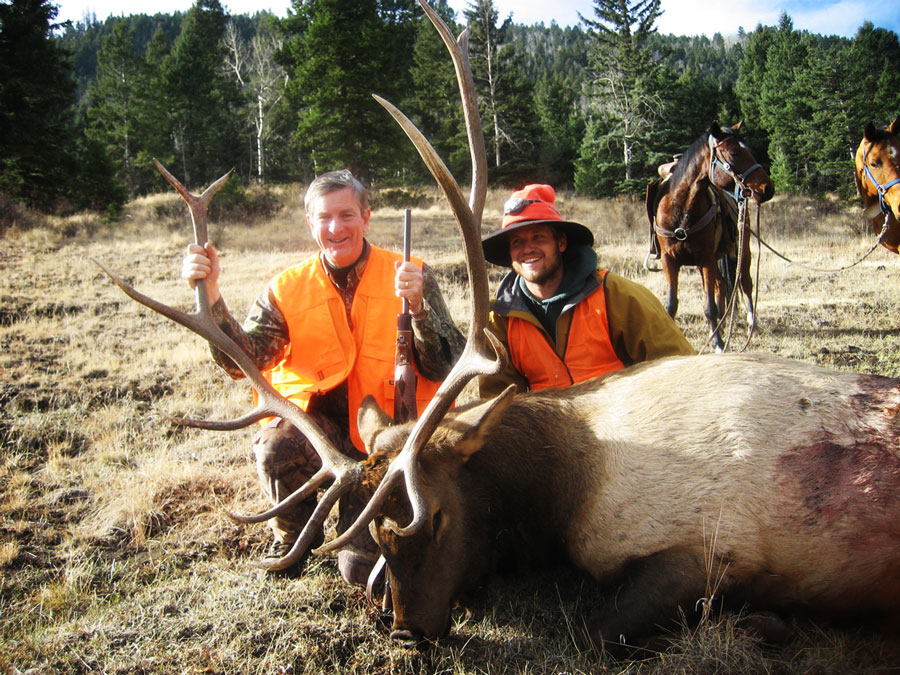 Elk Hunting Outfitter in Colorado